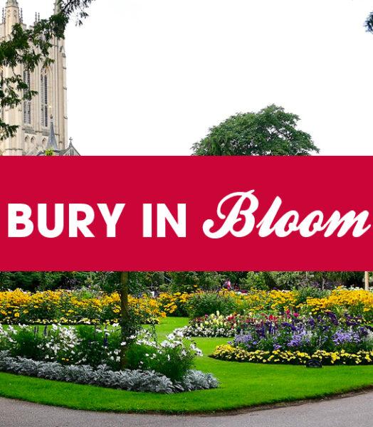 Bury In Bloom 2020