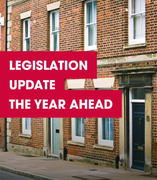 Legislation Update…The Year Ahead (2021)